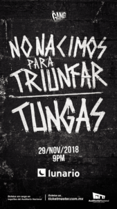 marvin_2018_tungas